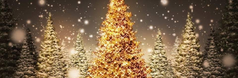 Šťastné a veselé Vánoce a hodně zdravím v Novém roce 2019!